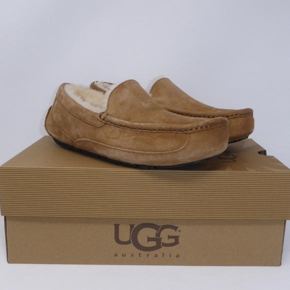 5732ee160a4 NEW UGG Ascot Chestnut Loafer Slipper NIB